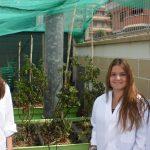 Alumnas de Terrassa experimentan el riego con agua de mar