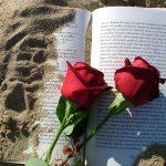 Día del Libro en Aqua Maris